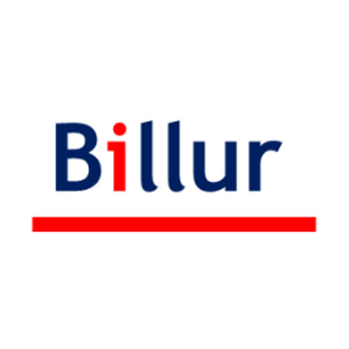 logo partner billur